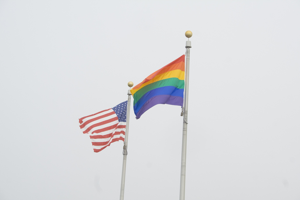 Gay Pride American USA Flag