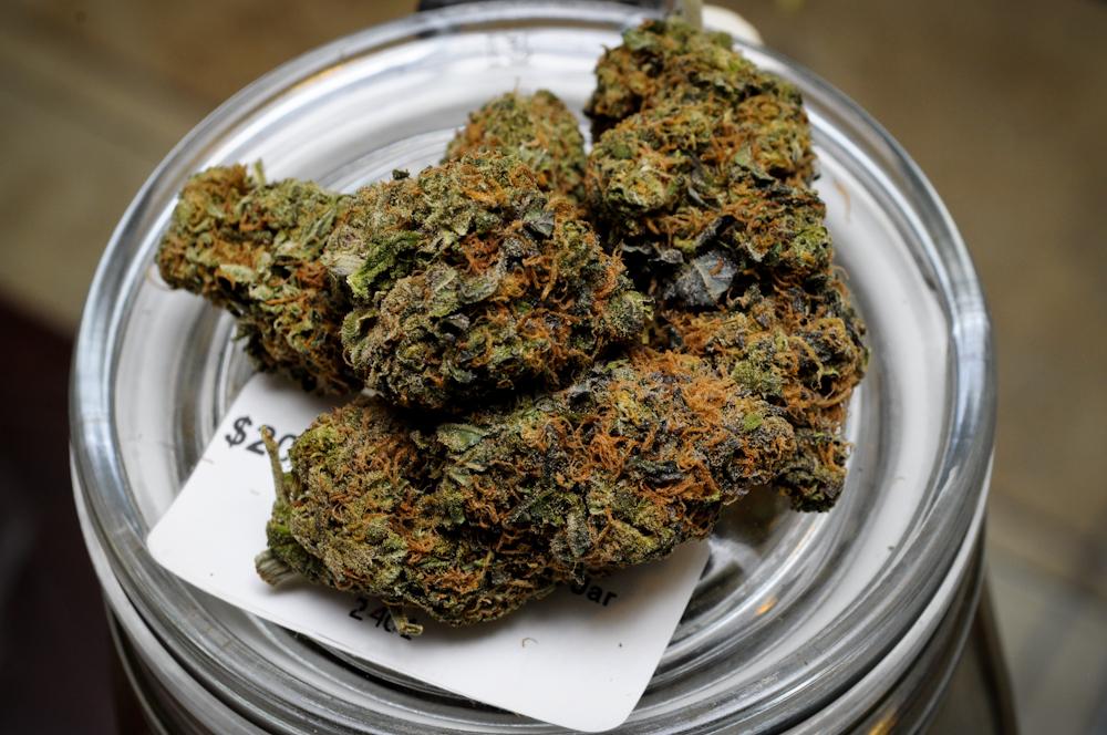 Medical Marijuana Grape Ape Strain Dank Depot