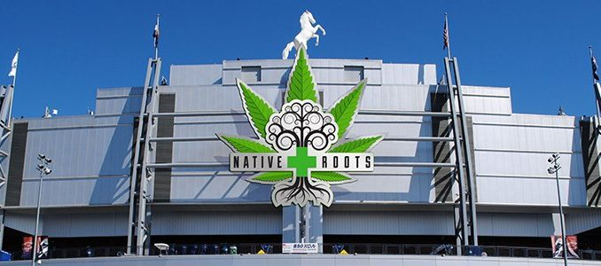 Native Roots at Mile High