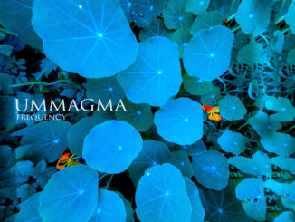 Ummagma Frequency Artwork