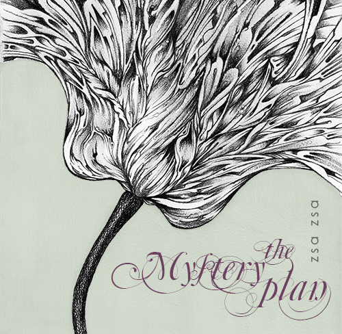 The Mystery Plan – Zsa Zsa (cover)