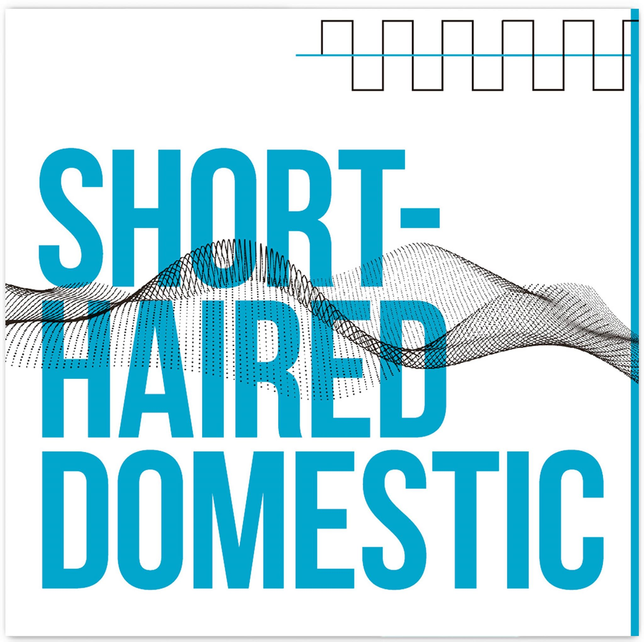 Short-Haired Domestic (single cover)